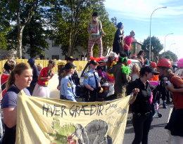 Umhverfisverndar sinnar mótmæla við Snorrabraut í Reykjavík.