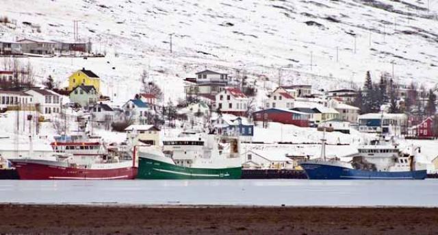 Norsku loðnuskipin í Fáskrúðsfirði í dag.
