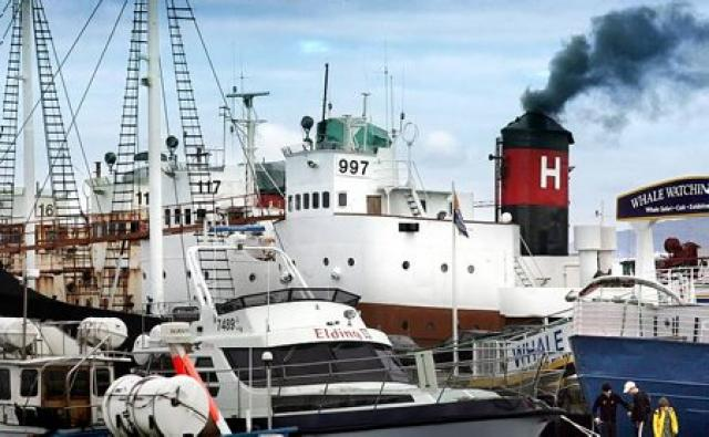 Hvalveiðiskip Hvals hf. í Reykjavíkurhöfn.
