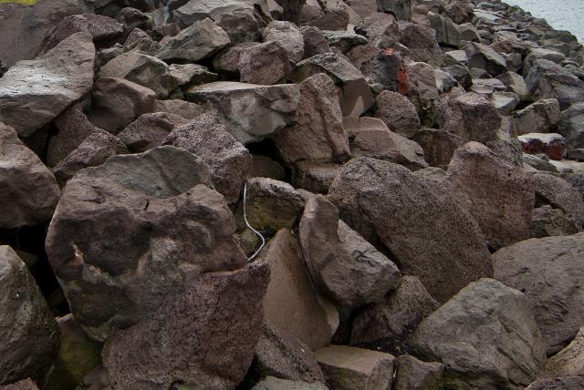 Ákærði er sagður hafa kastað grjóti fjórum sinnum í átt ...