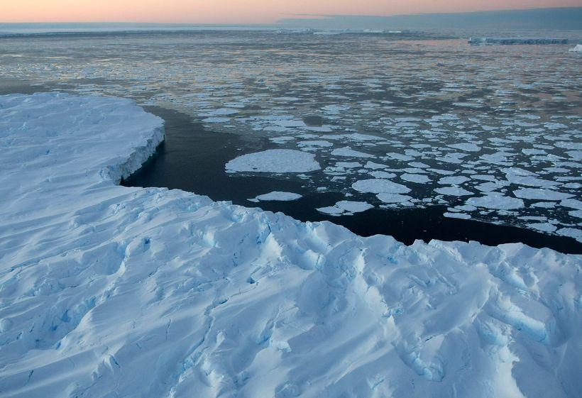 Kuldamet féll á Suðurskautslandinu í ágúst árið 2010.