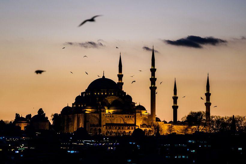 Mávar á flugi yfir mosku í Istanbúl. Árásum íslamista í ...
