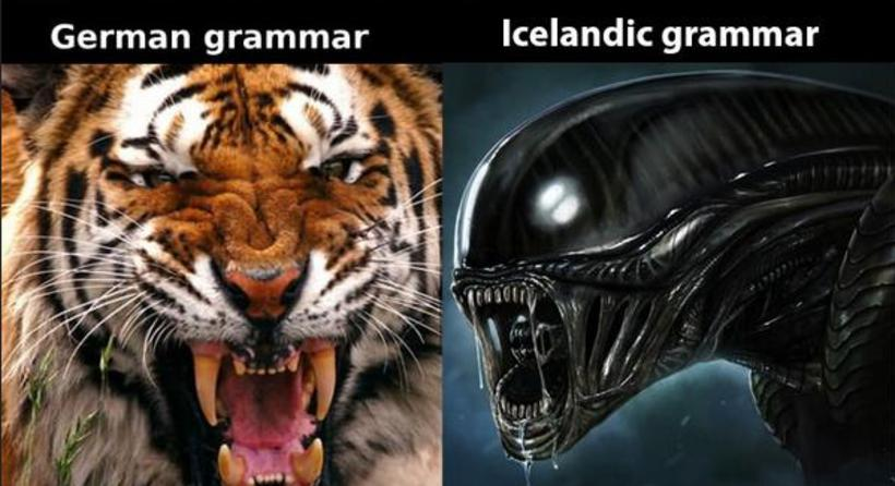 You may see memes like this doing the rounds. Icelandic ...