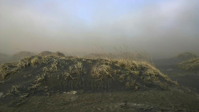 Sandurinn æðir yfir gróður í Eldhrauni við Brest.