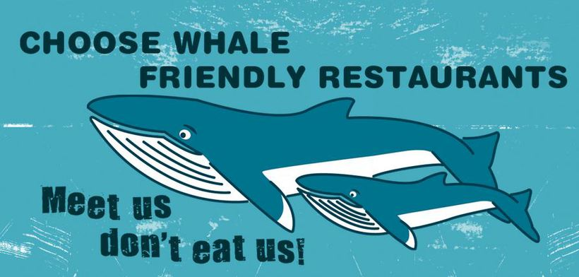 Restaurants are gradually signing up the to 'Whale Friendly Restaurants' ...