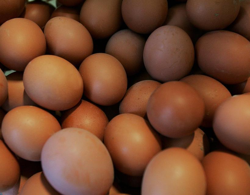 Á innflutt egg er lagður 30% verðtollur, auk 208-390 króna ...
