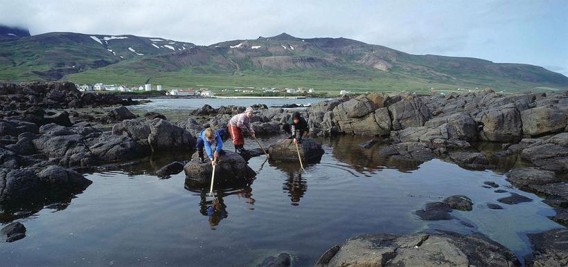 Börn að leik á Borgarfirði eystra.
