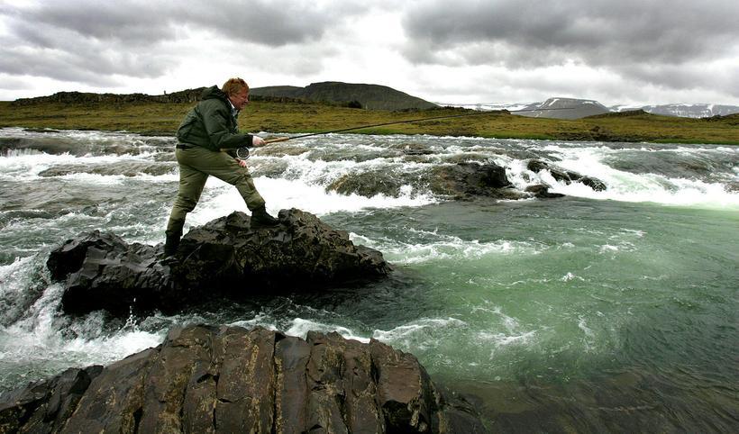 Laxá í Kjós is just north of Reykjavik