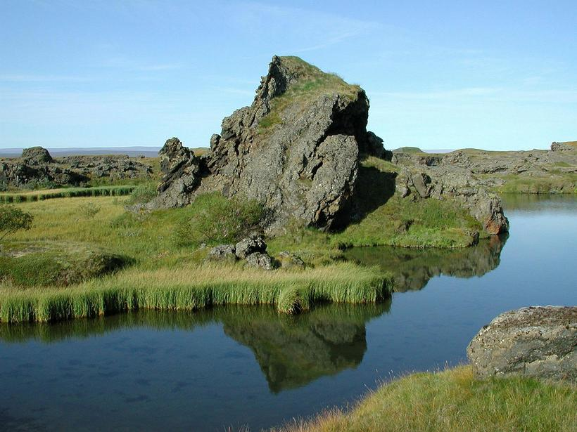 The fish at Mývatn feeds on the midge flies the ...