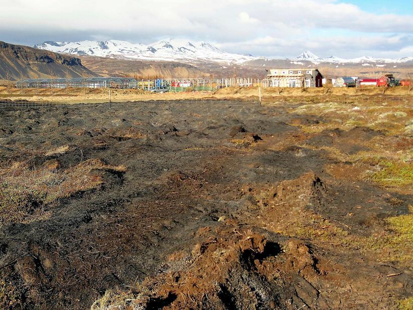Eldurinn fór nálægt ræktunarstöðinni Lágafelli.
