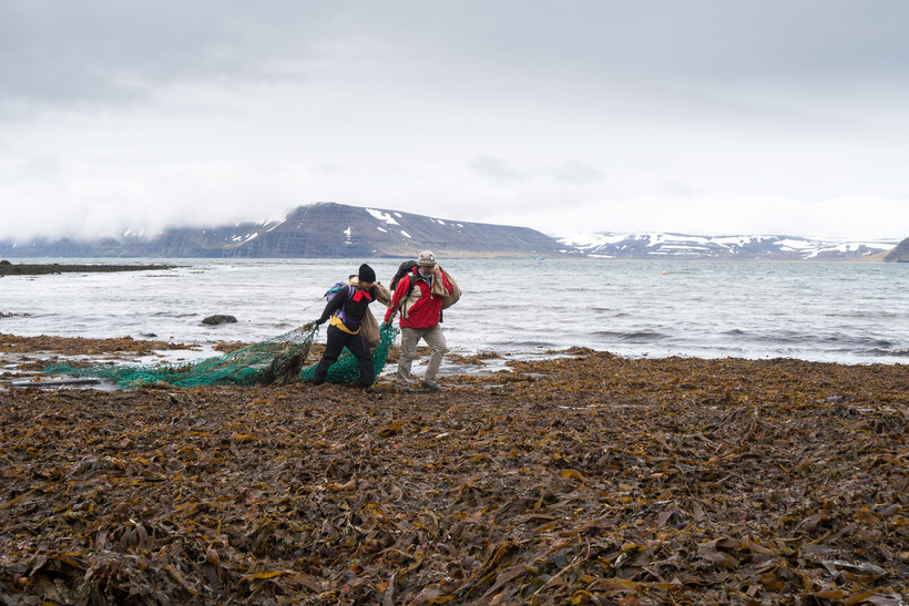 Two of the group removing an old net from the ...