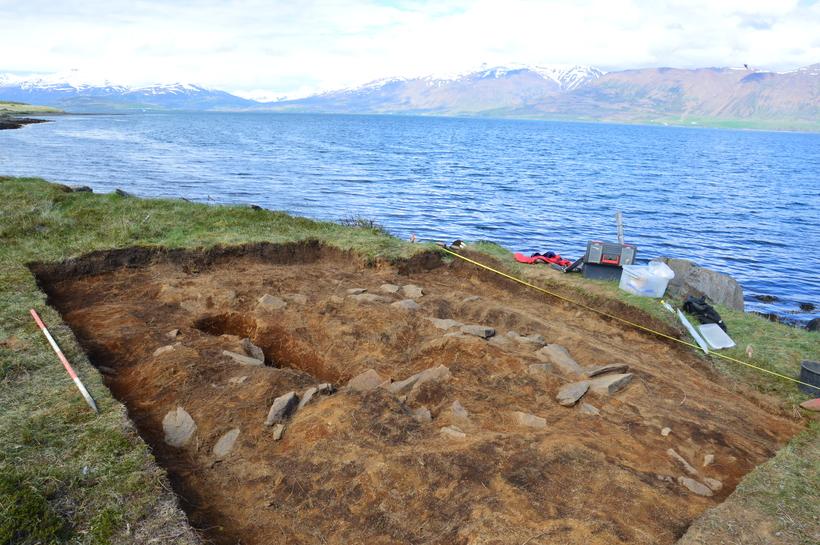 The excavation area.