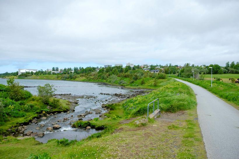 Olíumengun kom upp í Grafarlæk í Grafarvogi. Heilbrigðiseftirlitið og Veitur ...