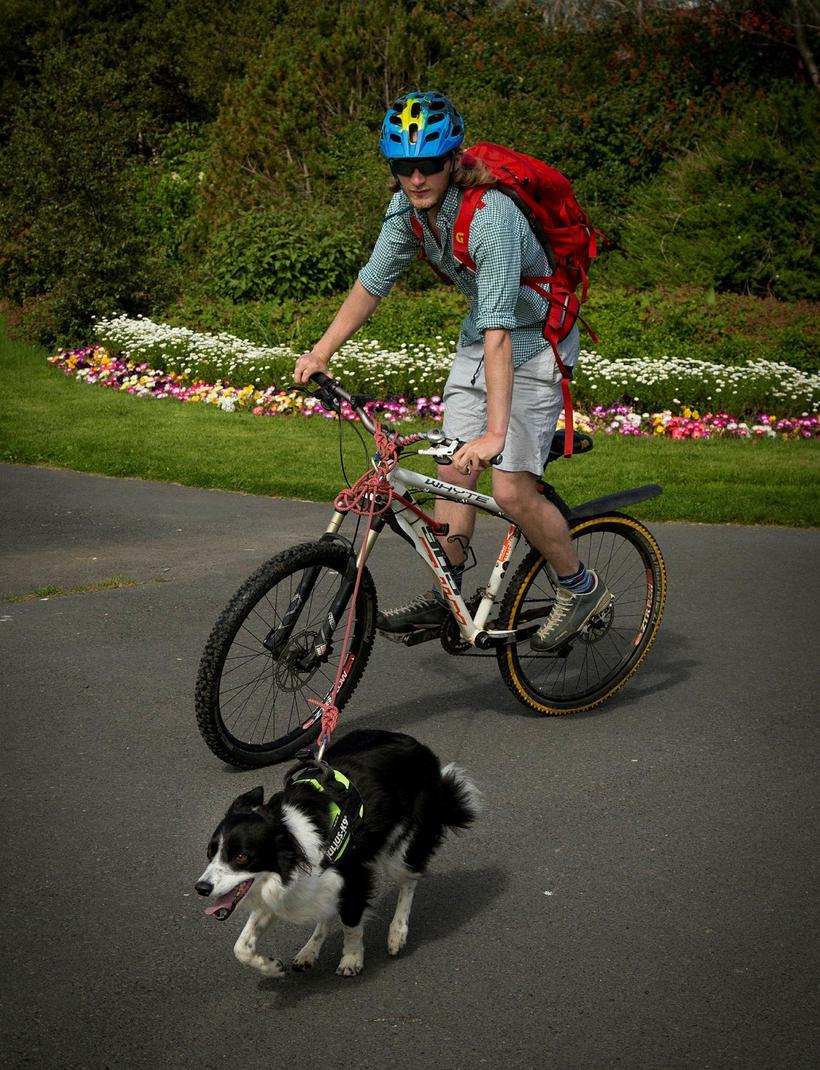 A cyclist in Hljómskálagarður park.