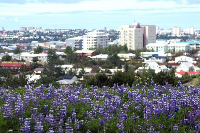 . Skortur er á húsnæði. Horft yfir Grafarvogshverfi í Reykjavík.