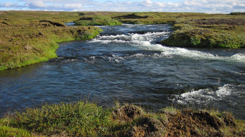 Frá Svartá í Bárðardal.