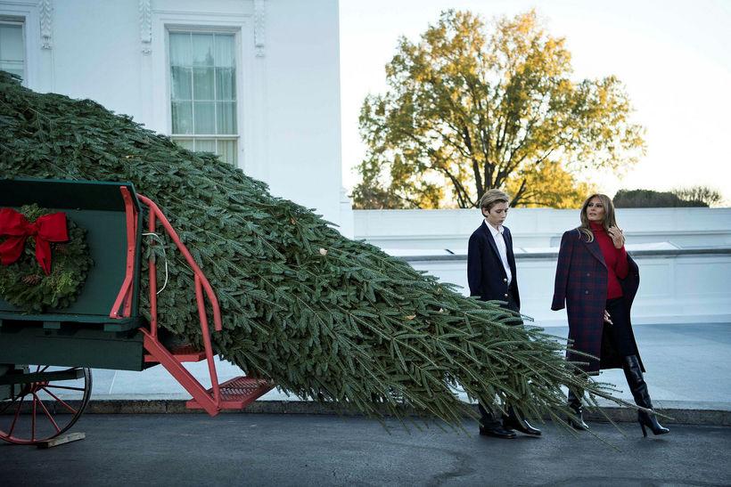 Melania Trump og Barron Trump skoða jólatréð.