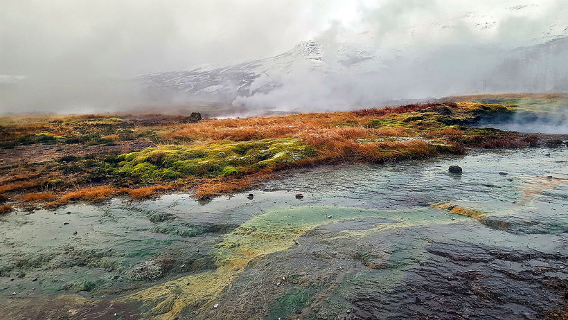 The hot springs refuse to accept the winter and bring ...