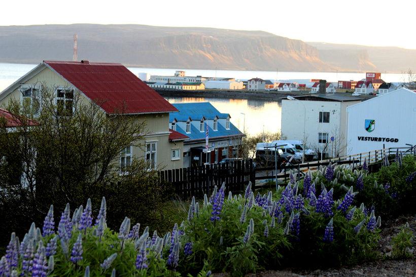 Patreksfjörður. Flutningskerfi raforku á Vestfjörðum er mjög veikt.