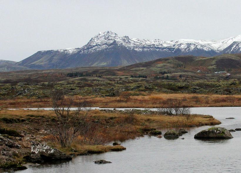 Vatnsból Reykvíkingar eru nyrst í Heiðmörkinni. Myndin er tekin á ...