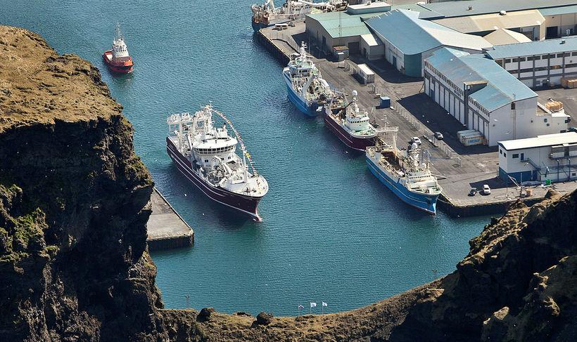 Heimaey VE, skip Ísfélagsins, kemur til Eyja vorið 2012.