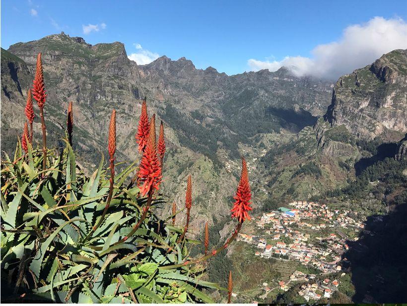 Madeira er mikil náttúruparadís.