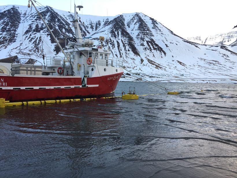 Aðstæður við höfnina á Flateyri í morgun.