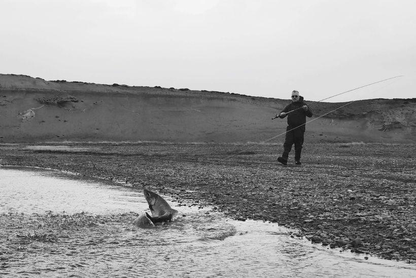 22 punda birtingur kemur á land í Rio Grande. Rafn ...