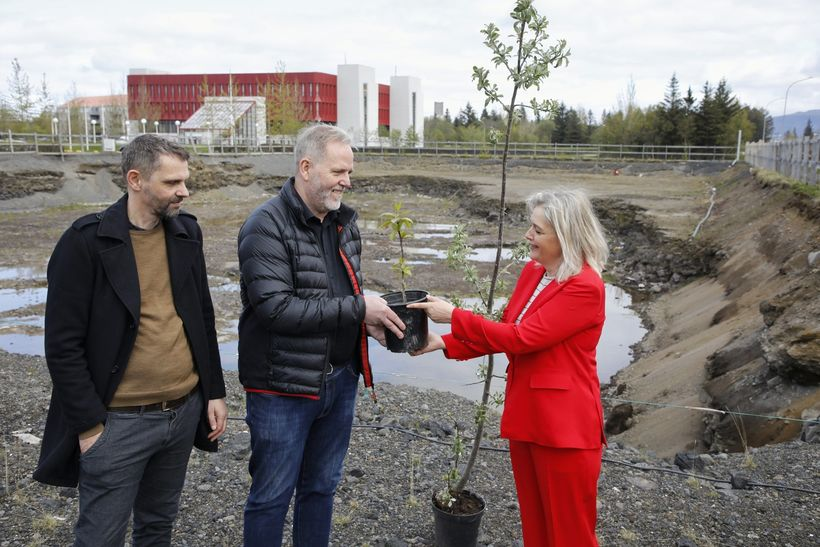 Trjáplanta afhent Jóhannesi Benediktssyni, formanni Skógræktarfélagi Reykjavíkur og Helga Gíslasyni ...