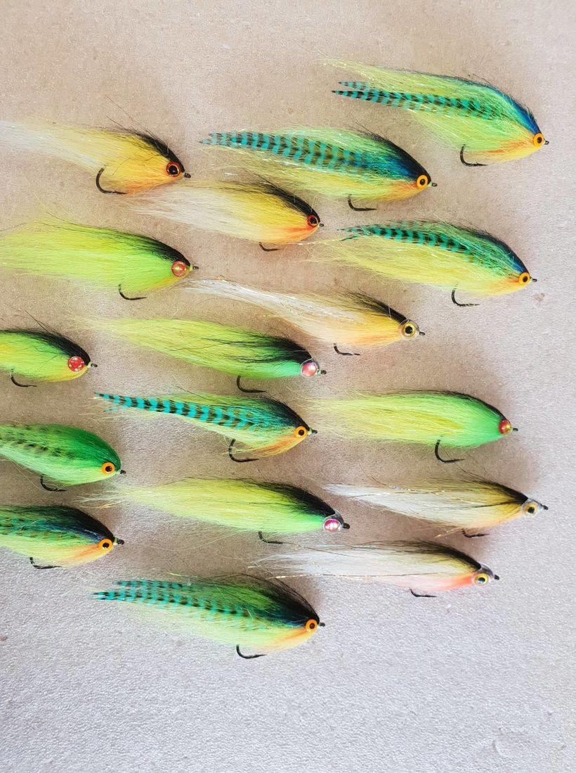 Parrot Fly eða Páfagauksflugan í nokkrum útfærslum. Marek er margfaldur ...