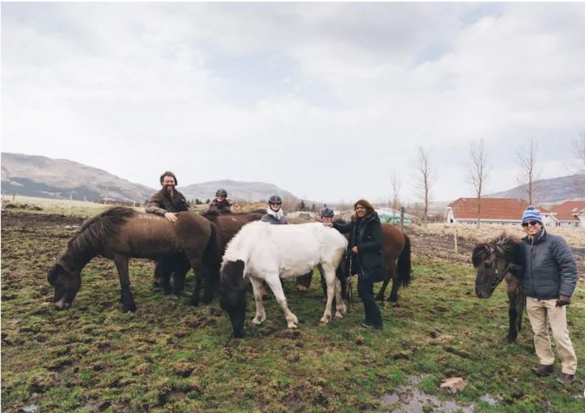 The Icelandic horse attracts many tourists.