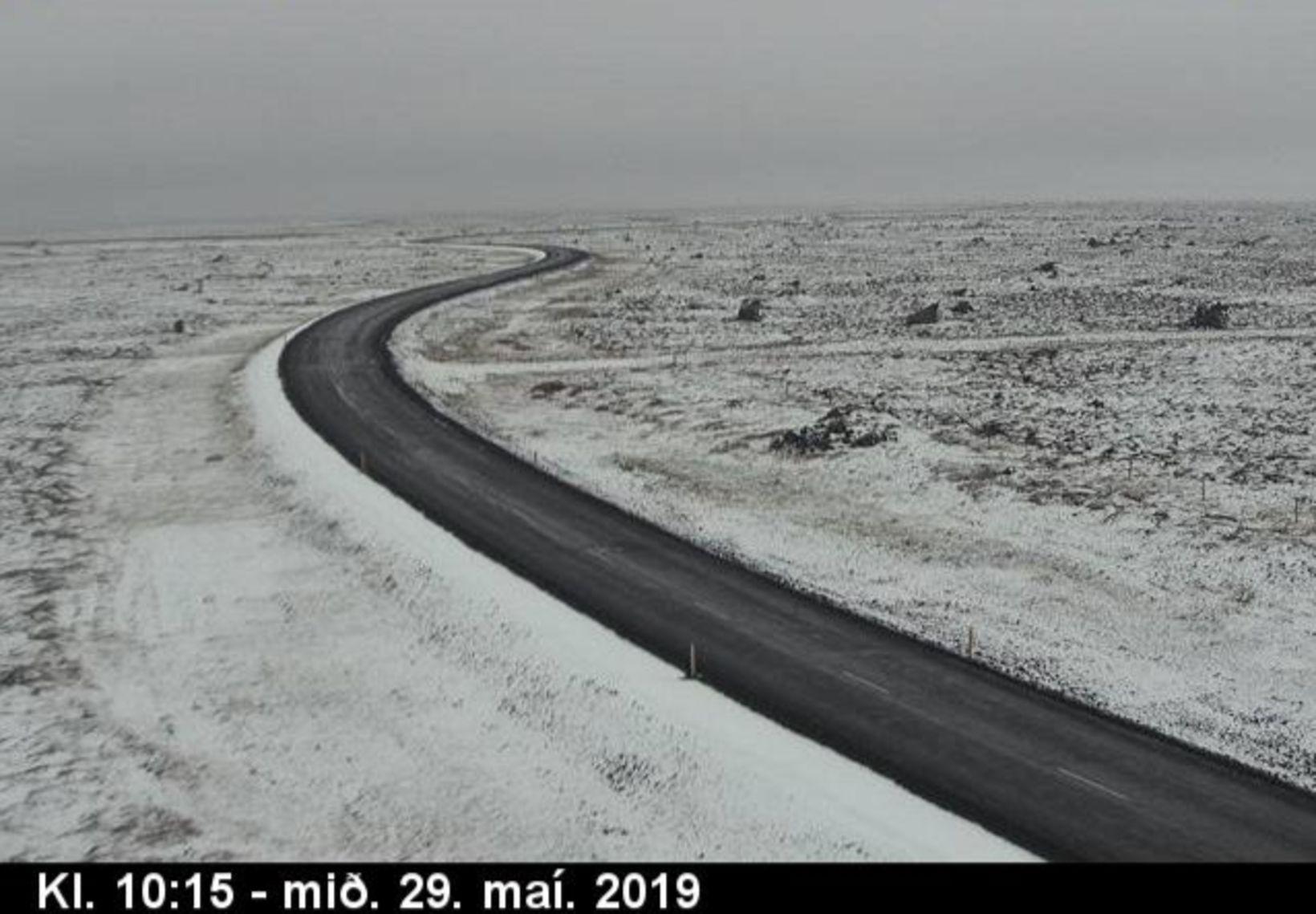 Raufarhafnarvegur road, Northeast Iceland, at 10:15 this morning.