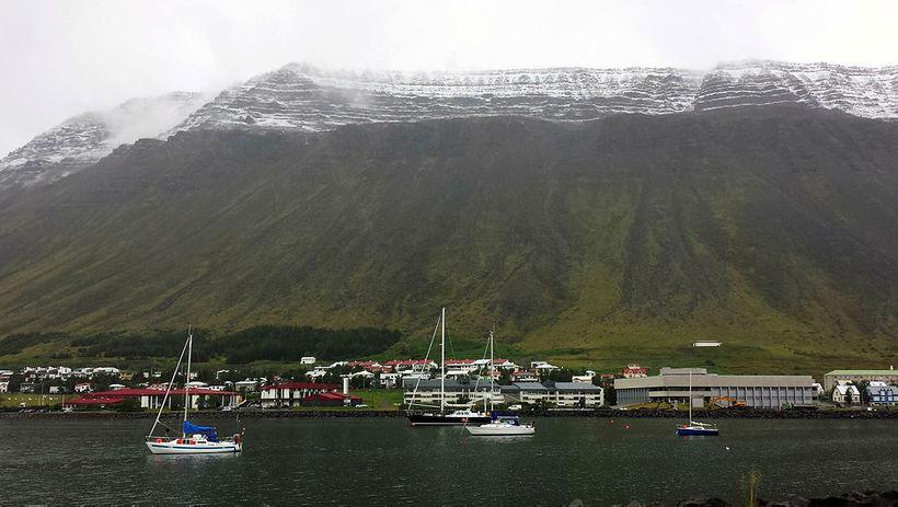 Enginn dýralæknir er starfandi á Ísafirði.
