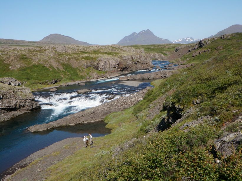 Bryggjuhylur í Breiðdalsá.