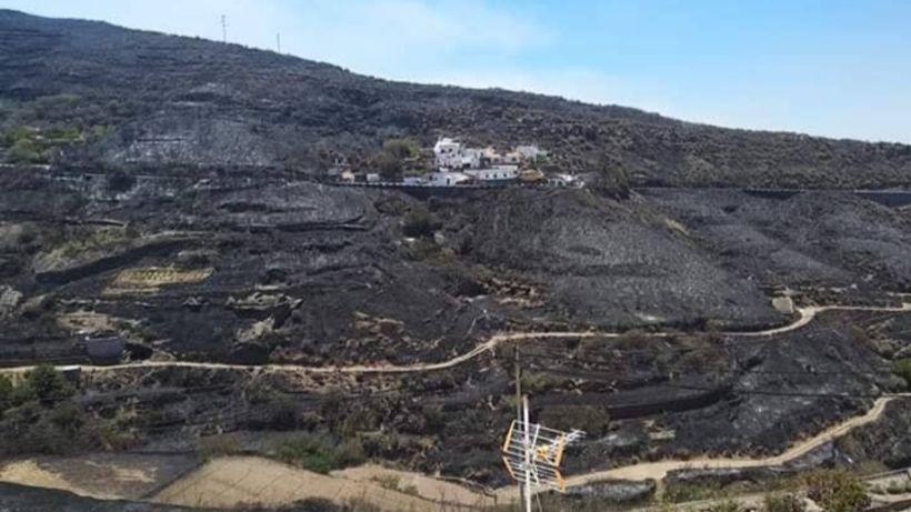 Eldurinn á Gran Canaria hefur skilið eftir sig sviðna jörð.