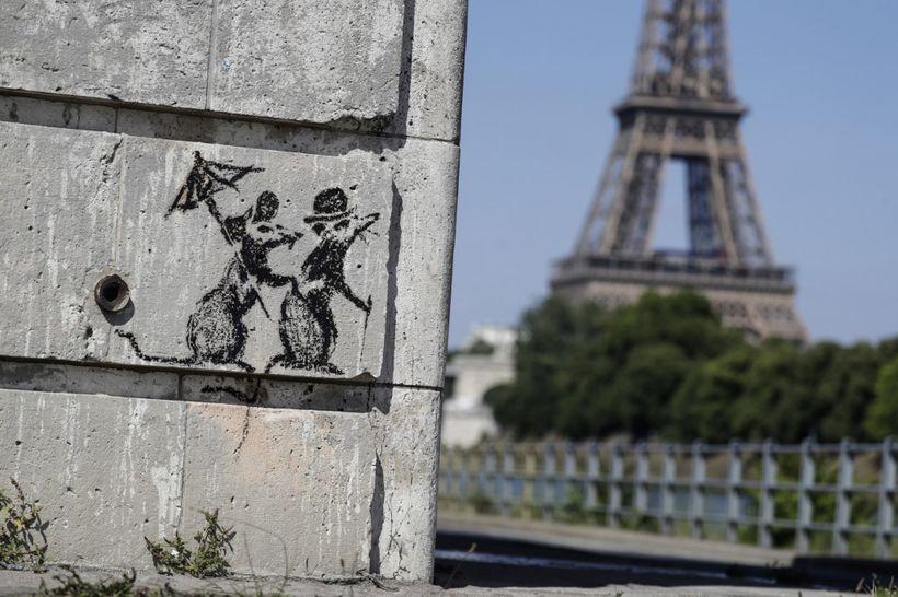 Renée Zellweger er hrifin af París.