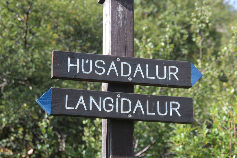 Hlauparar fóru 12 km leið um Þórsmörk á laugardaginn.