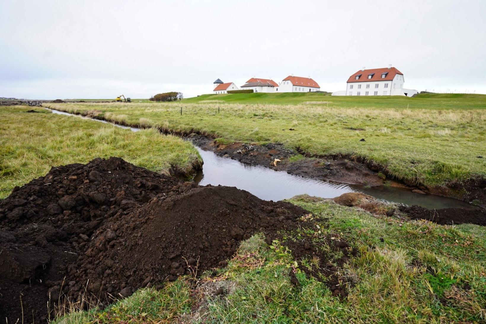 Forseti Íslands er verndari Votlendissjóðs.