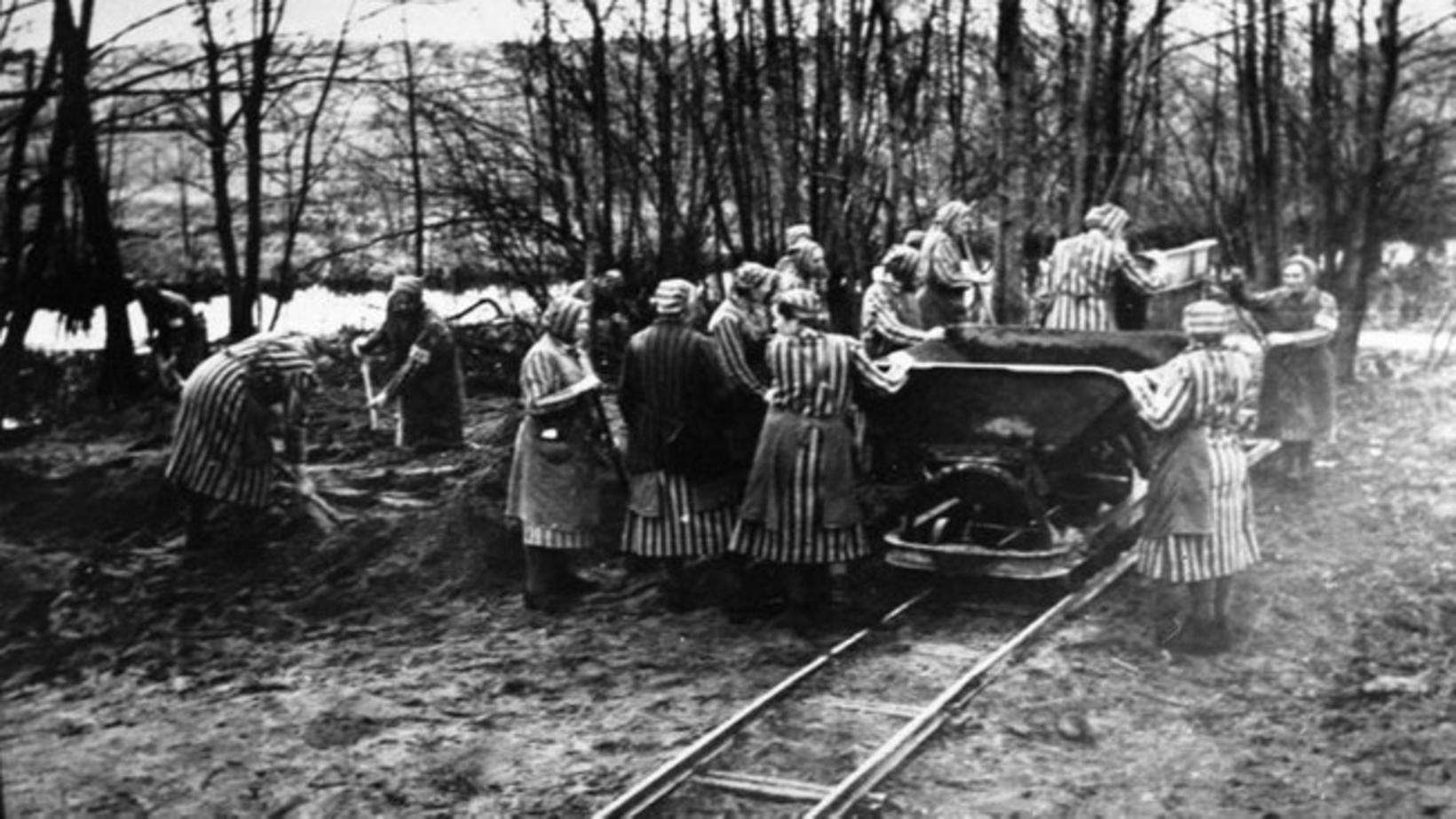 Konur við þrælkunarvinnu í Ravensbrück-útrýmingarbúðunum í Þýskalandi árið 1939. Þar …