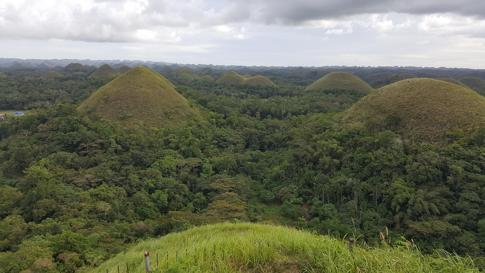 Chocolate Hills í Bohol.