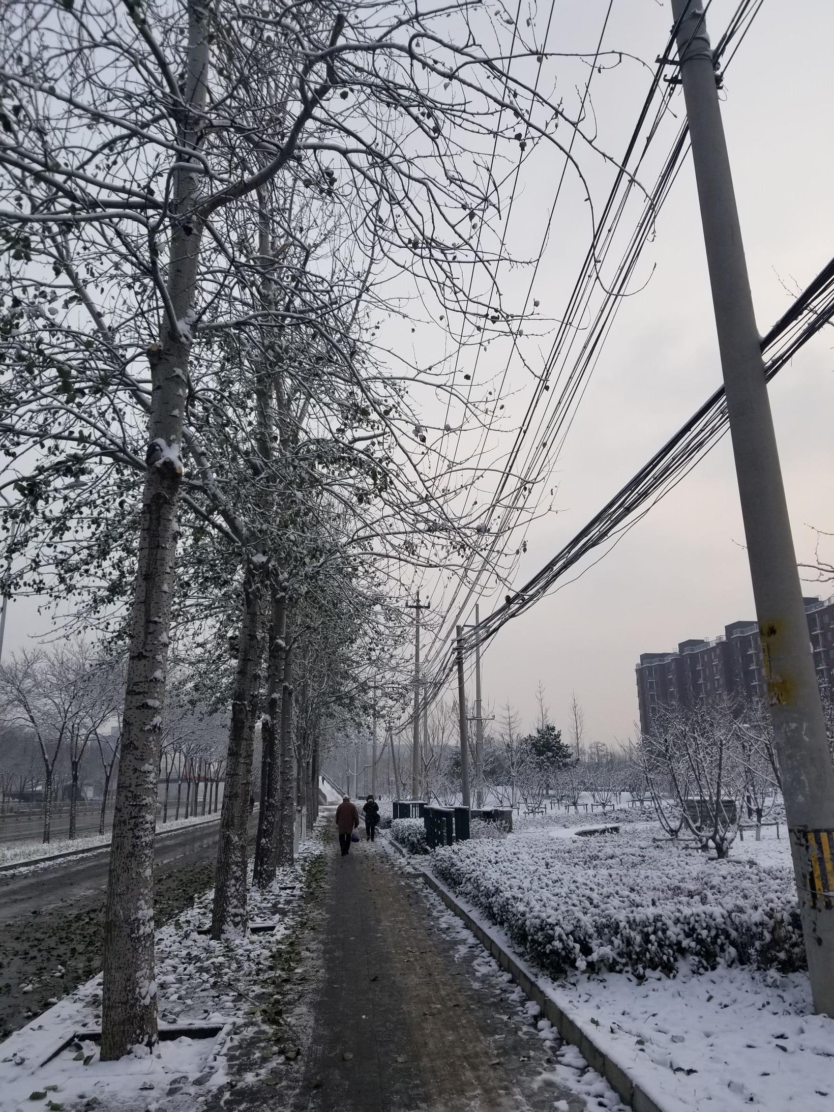 Árstíðaskiptin í Peking eru skörp. Þessi mynd var tekin 30. …