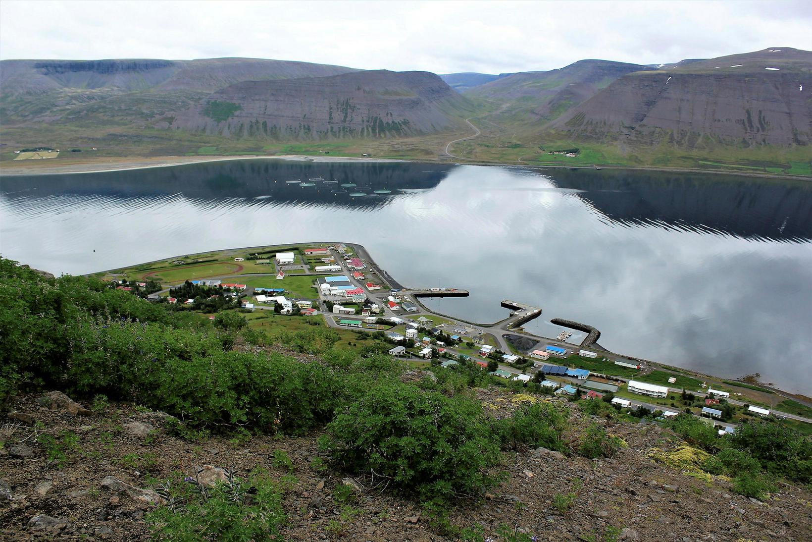 Þingeyri in Dýrafjörður fjord.