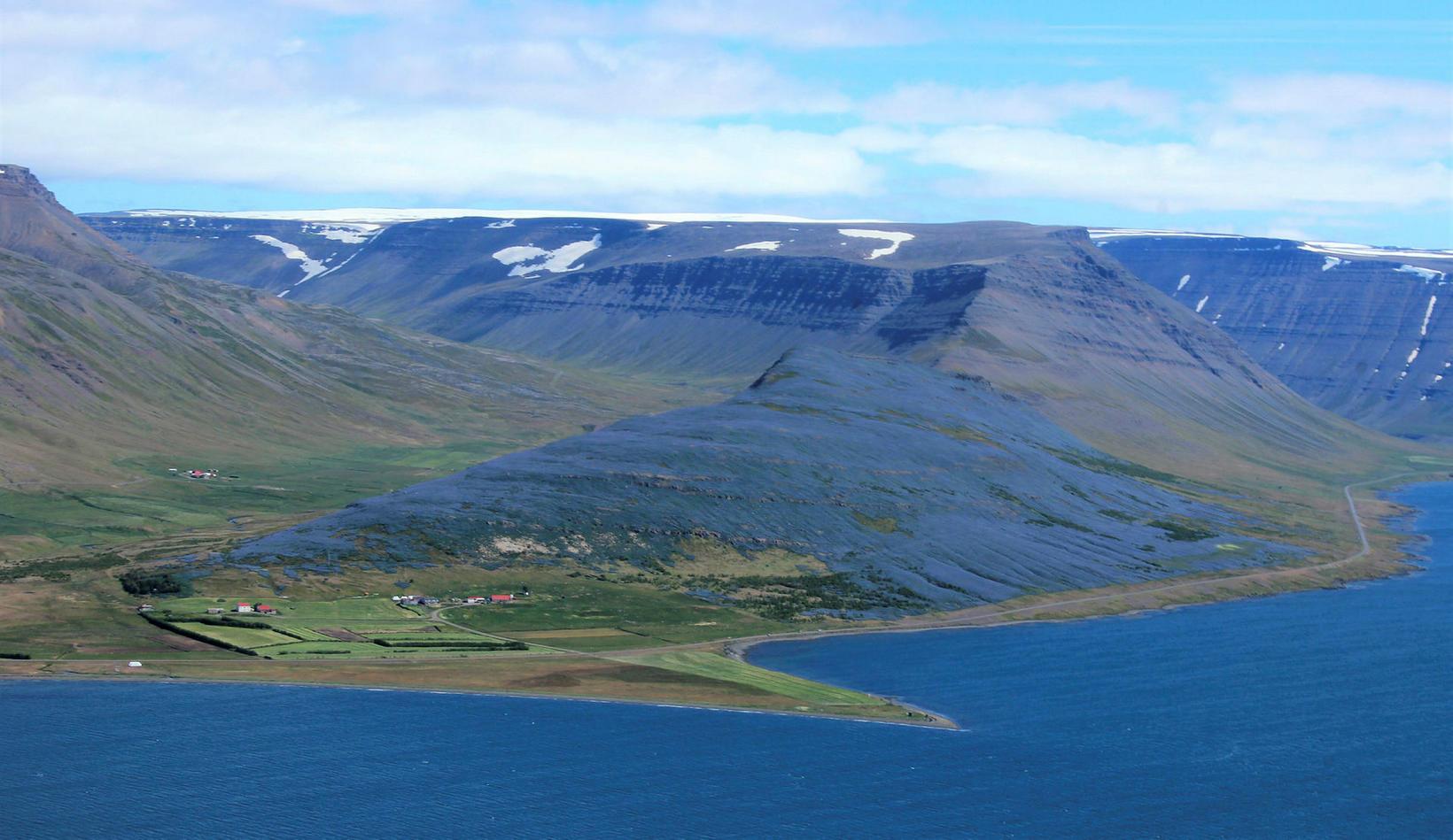 From Dýrafjörður fjord.