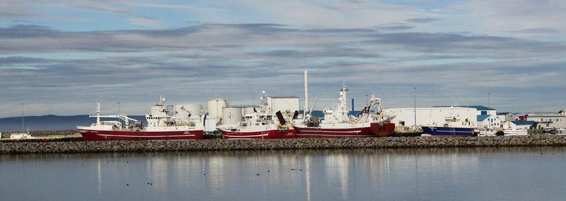 Rauðmáluð skip Ísfélags Vestmannaeyja við bryggju á Þórshöfn. Mynd úr ...
