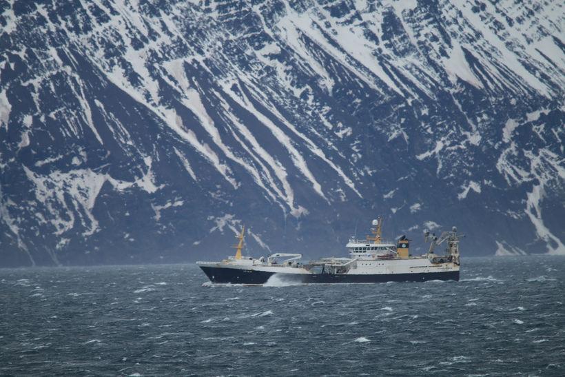 Grænlenska skipið Polar Amaroq að veiðum. Mynd úr safni.