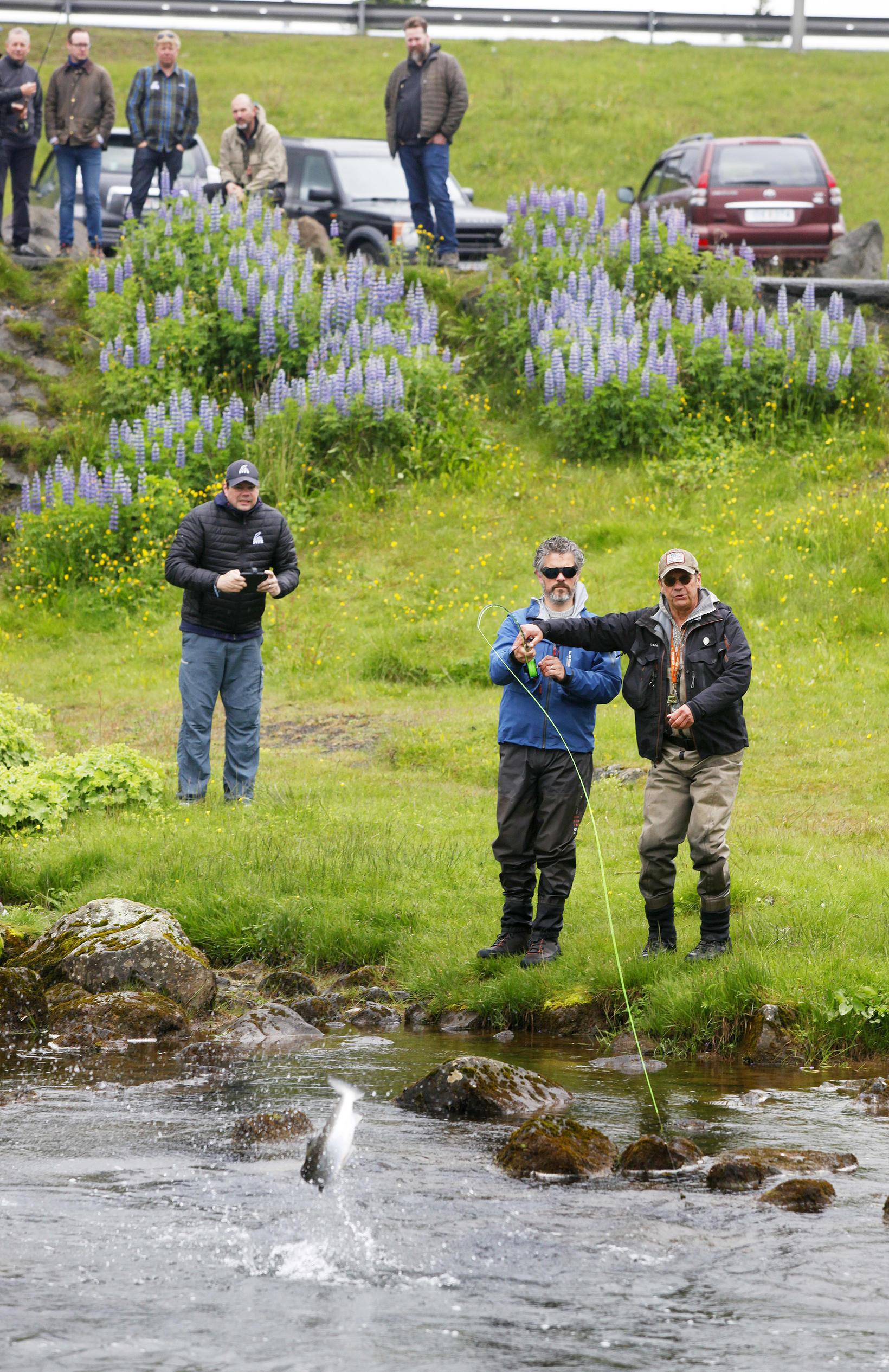 Dagur B. Eggertsson borgarstjóri setti í annan laxinn í Elliðaánum …
