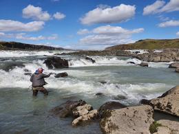Veiðistaðurinn Hulda í Urriðafossi. Þar eru nú kraftmiklar smálaxagöngur og er hörkuveiði þessa dagana. Tæplega 400 laxar eru komnir á land í Urriðafossi.