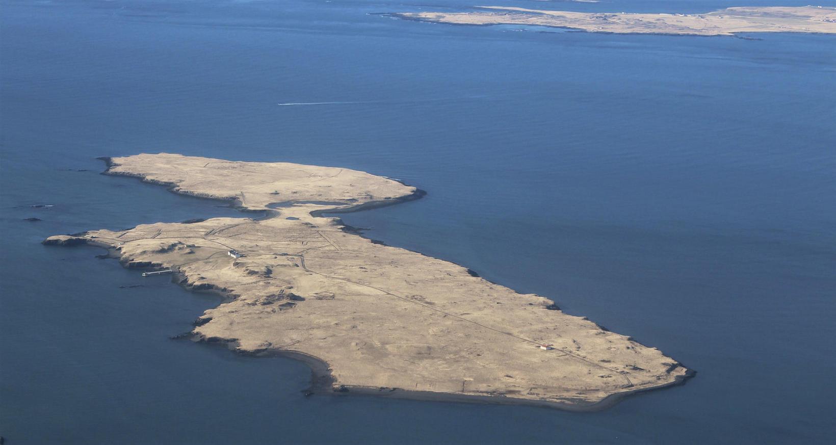 Viðey er 1,7 km² að flatarmáli og rís hæst 32 …