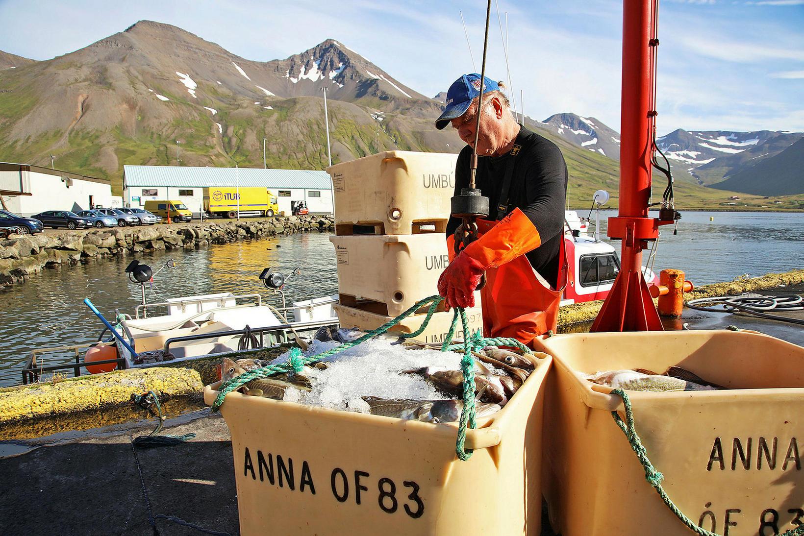 Afli strandveiðibáta hefur aldrei verið meiri en í fyrrasumar.