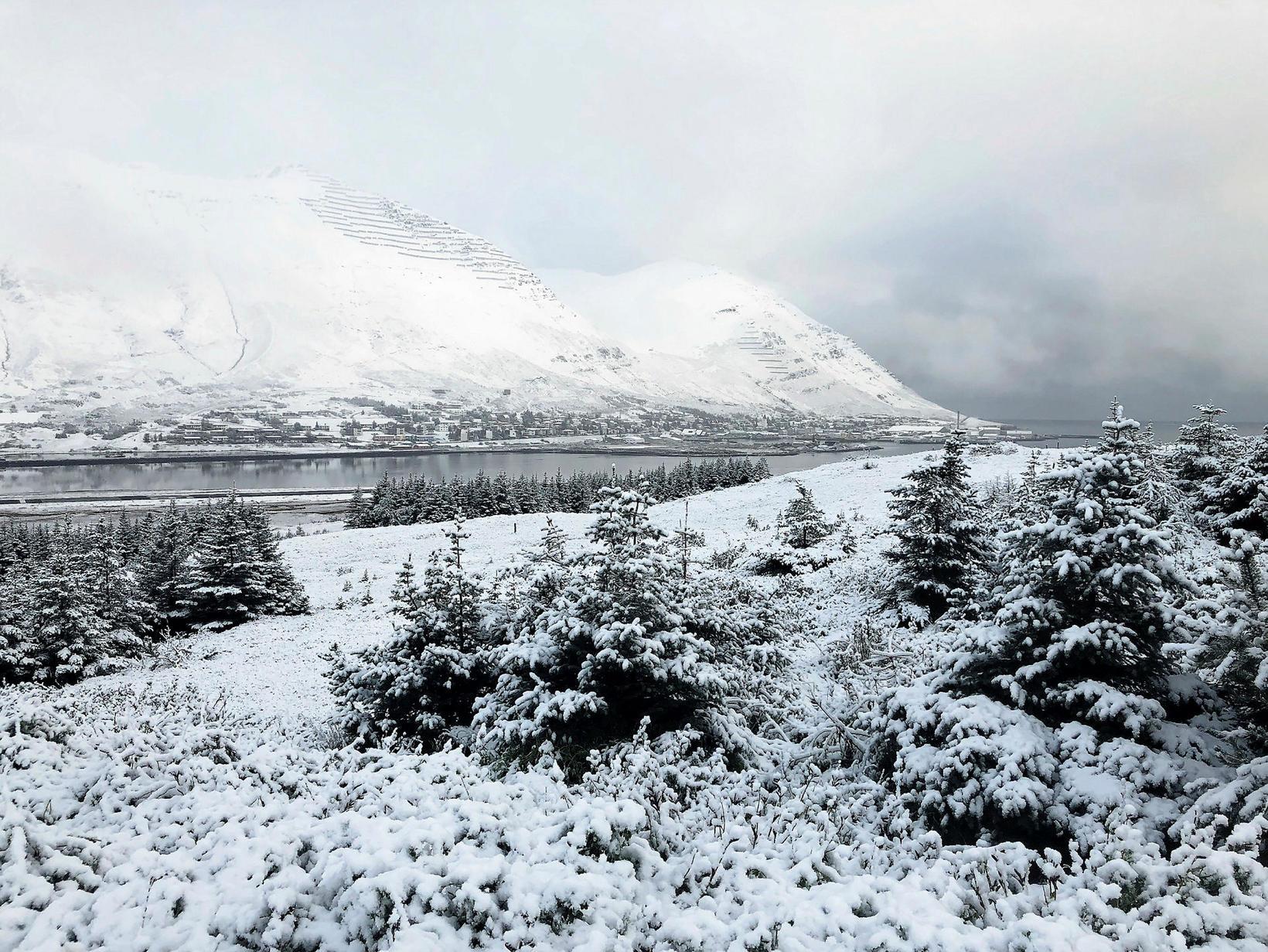 Siglufjörður, dressed in white this morning.